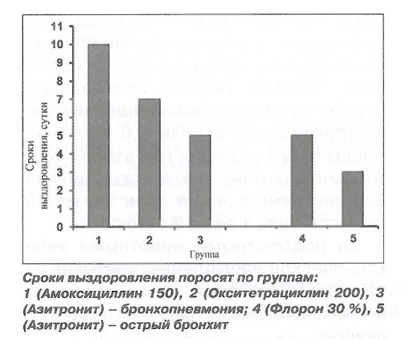 Азитронит-новый макролид при респираторных заболеваниях у свиней - изображение NITA FARM