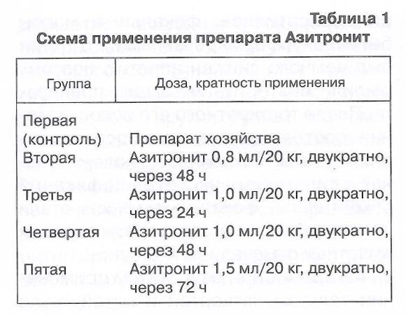 Эффективность нового препарата Азитронит при гастроэнтерите телят - изображение NITA FARM