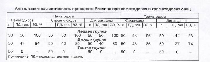 Эффективность препарата Риказол при нематодозах и трематодозах овец - изображение NITA FARM