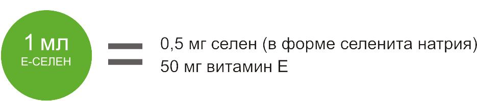 Е-селен фото, Состав