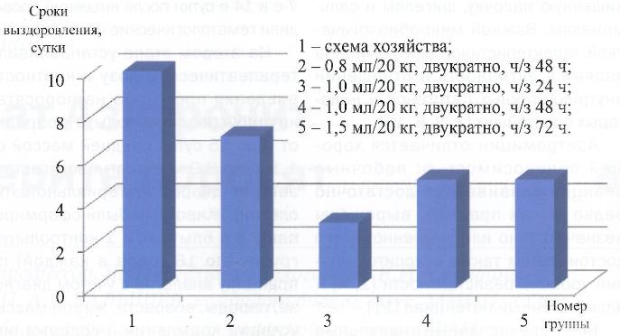 Новый препарат Азитронит при гастроэнтерите поросят - изображение NITA FARM