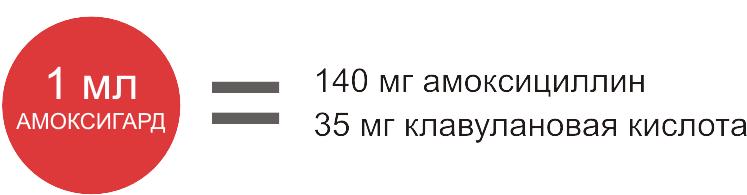 Амоксигард фото, Состав