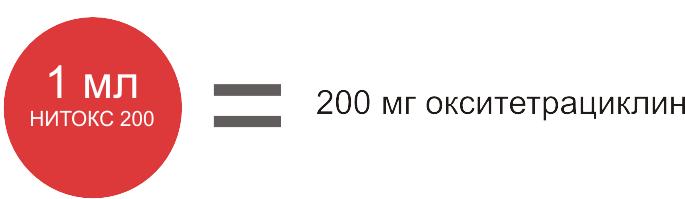 Нитокс 200 фото, Состав